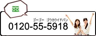 TEL0120-55-5918